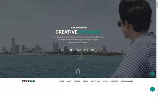 xperson lite-free portfolio theme