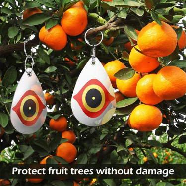 bird diverter to protect fruit trees