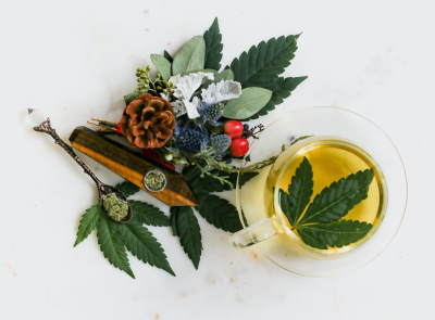 Image shows an arrangement of leaves for a CBD cyber Monday promotion.