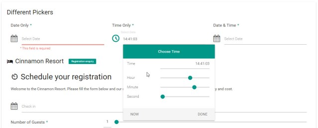 Date & Time Picker Element - Working with Form Builder
