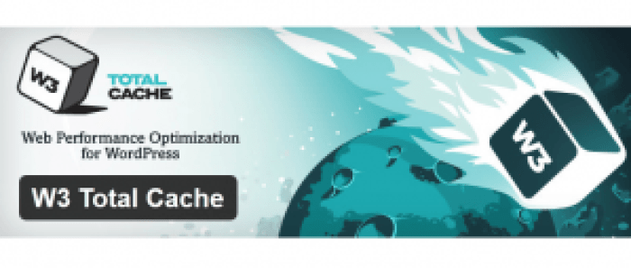 W3 Total cache, Cache plugin, WordPress plugin