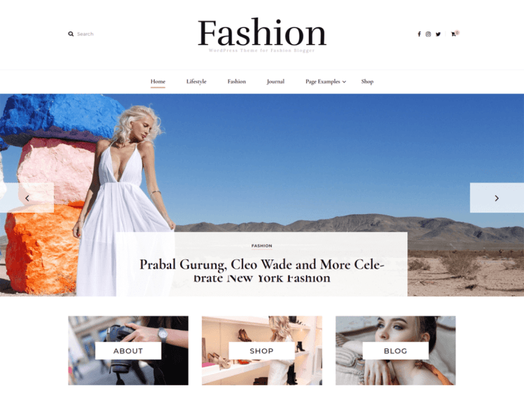 Blossom Fashion, Free WordPress themes
