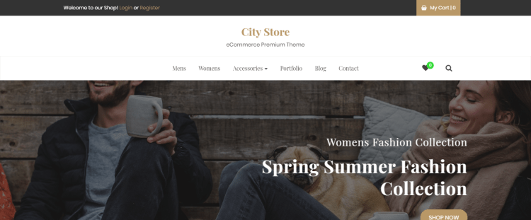 premium eCommerce WordPress themes, City Store