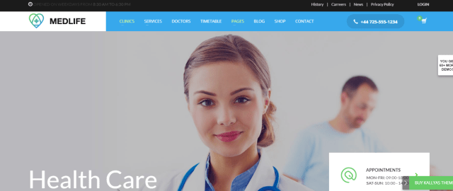 Premium Medical WordPress Theme, Kallyas
