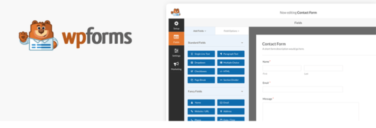 must-have-plugins-in-WordPress-WP-Forms-WPreviewteam