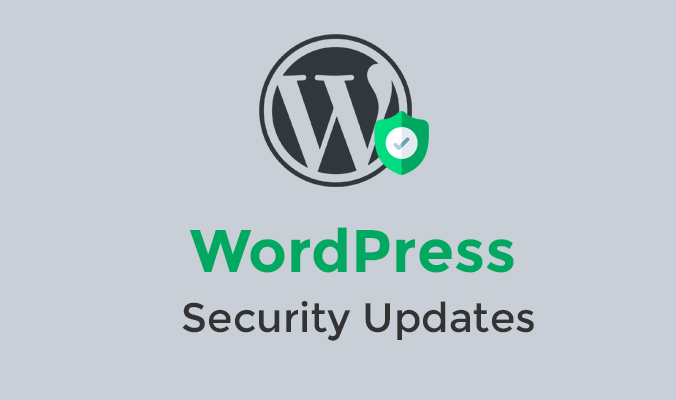 Check for WordPress Security Updates-WPreviewteam