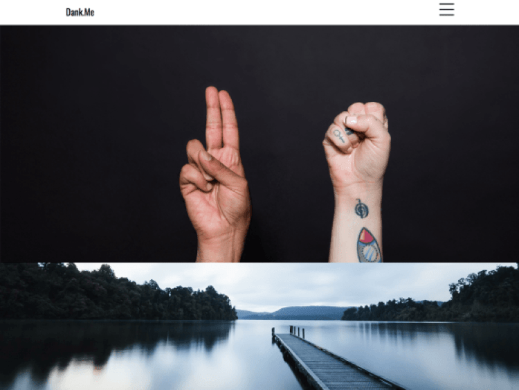 DankPortfolio-free-best-portfolio-WordPress-themes-WPreviewteam