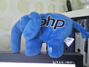 WordPress Programming Language PHP