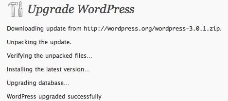 WordPress-301-update