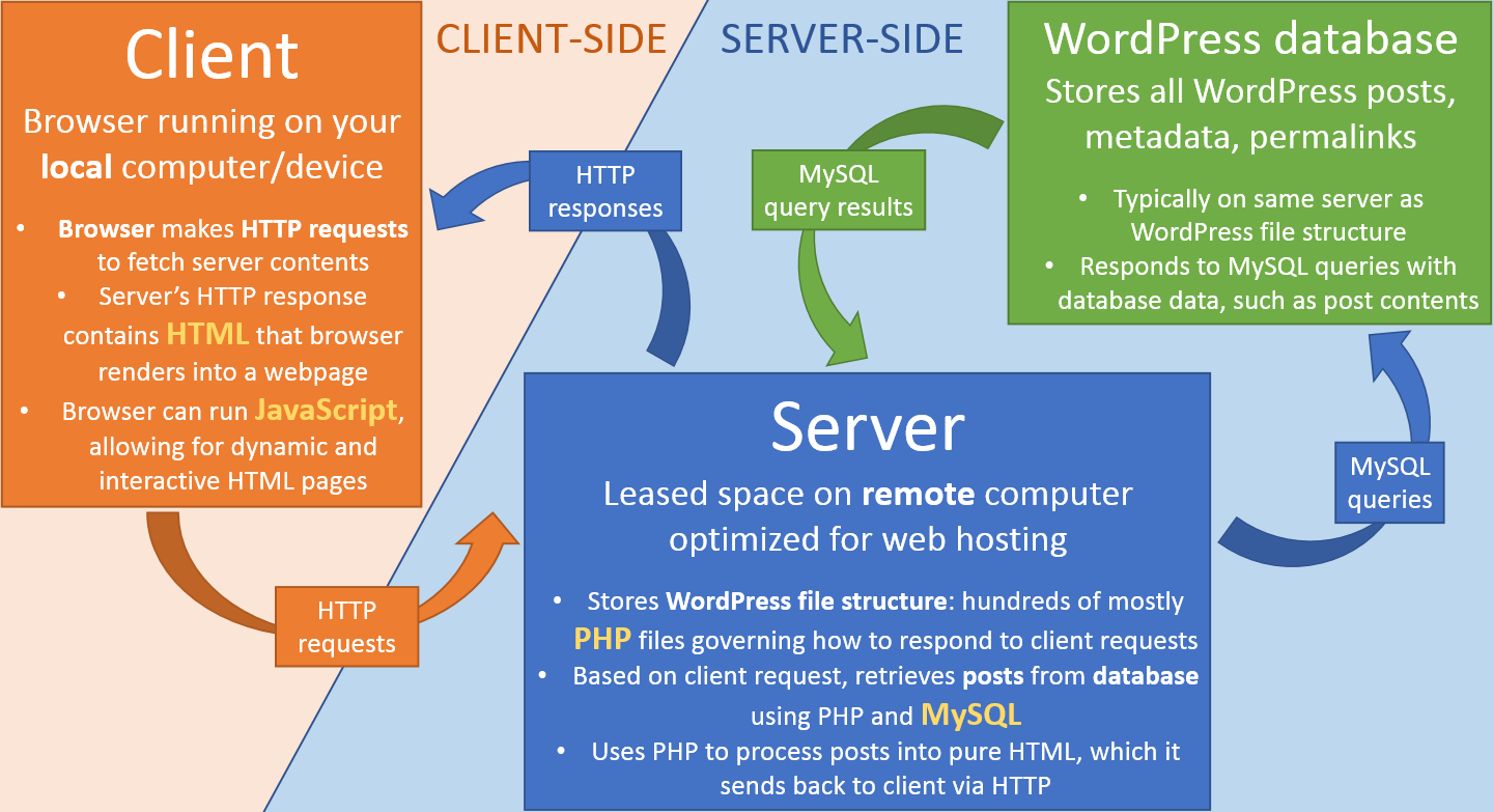 Definition of Client/server network at