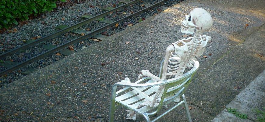 waiting skeleton | WordPress core
