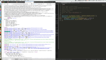 How to Use wp_enqueue_script() to Include JavaScript Files