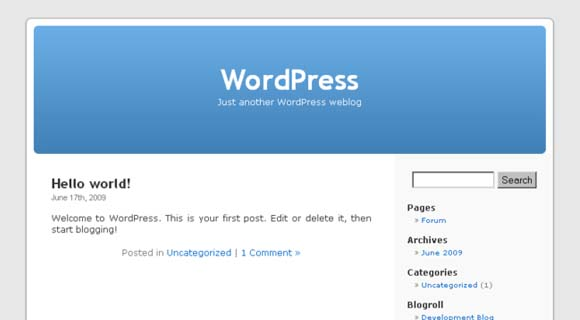 10 Tips to Improve Your WordPress Theme | WPShout