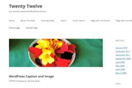 Twenty Twelve WordPress Default Theme