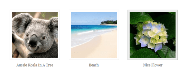 Image Gallery In WordPress 3.5