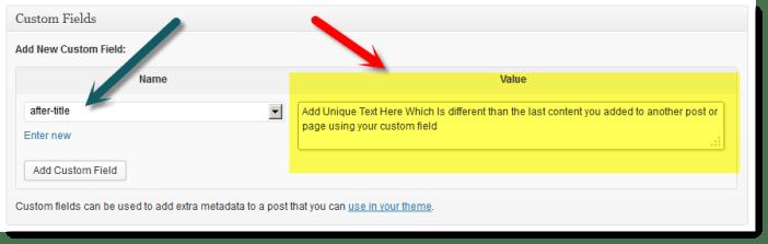 add new custom field text content