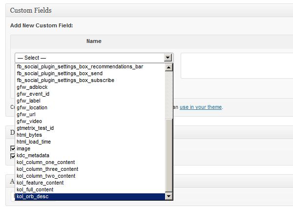 custom fields module