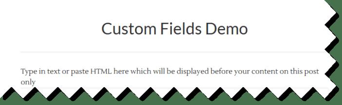 example custom fields