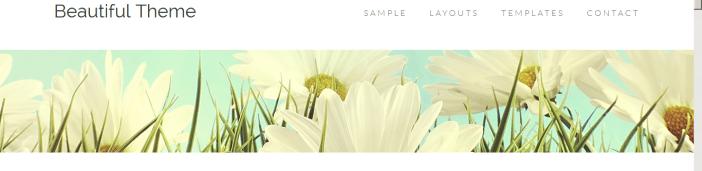 Beautiful Pro Theme by StudioPress