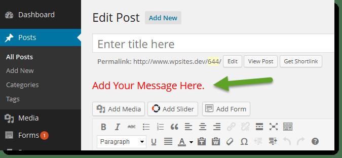 Edit Post Admin Screen