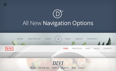 divi_2-4_headers