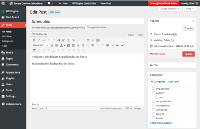 WordPress Admin Design - Edit Post Screen