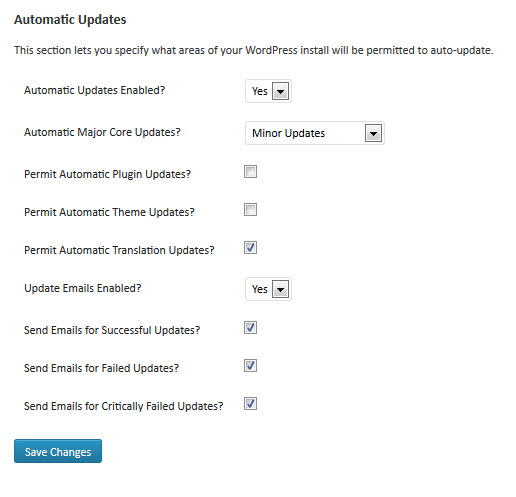 Auto Update Plugin Options