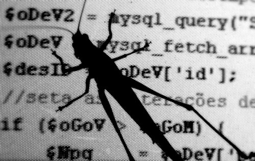 Good First Bug