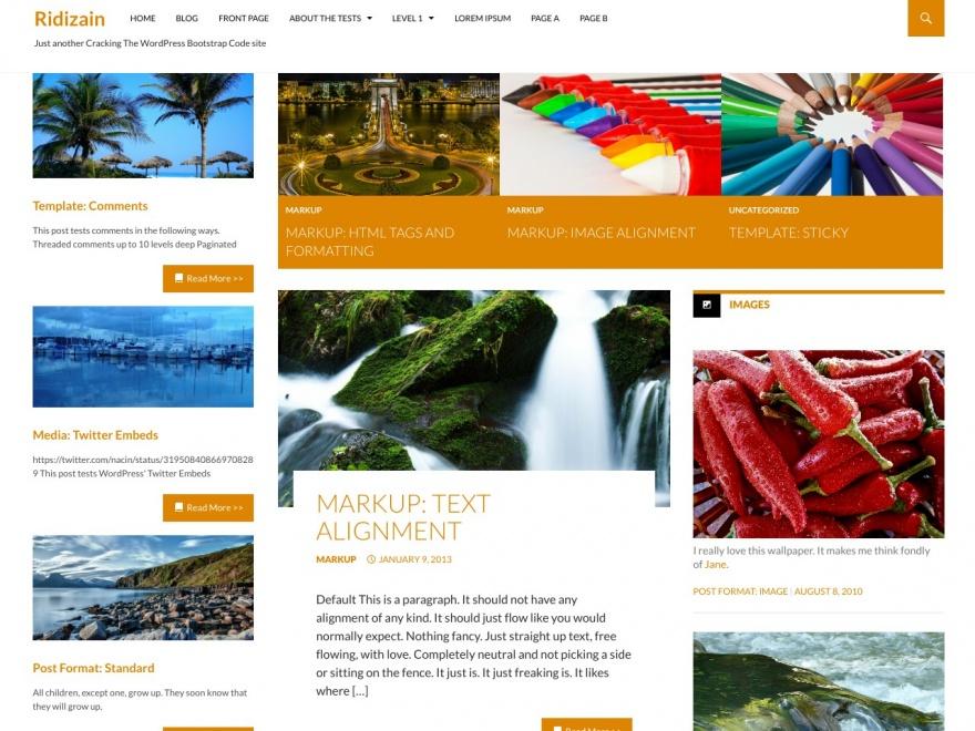 Ridizain: A Free WordPress Magazine Theme Inspired By Twenty ...