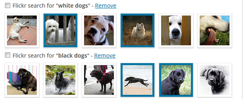 WP Inject Makes It Easy to Add Free Creative Commons Images to WordPress Posts