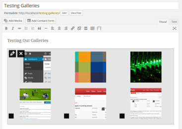 Preview Galleries Live Within The Visual Editor