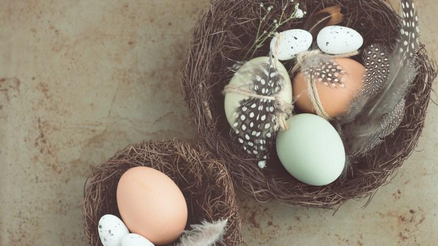 Gutenberg 6.2 Adds Nesting Capabilities to Cover, Media & Text Blocks