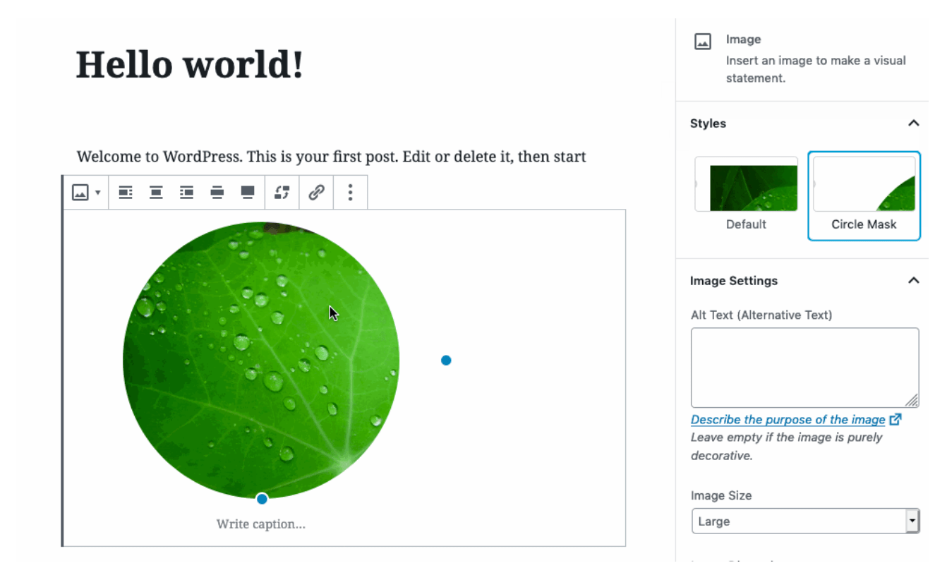 Planet — WordPress