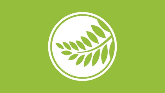 White Pods plugin logo on green background.