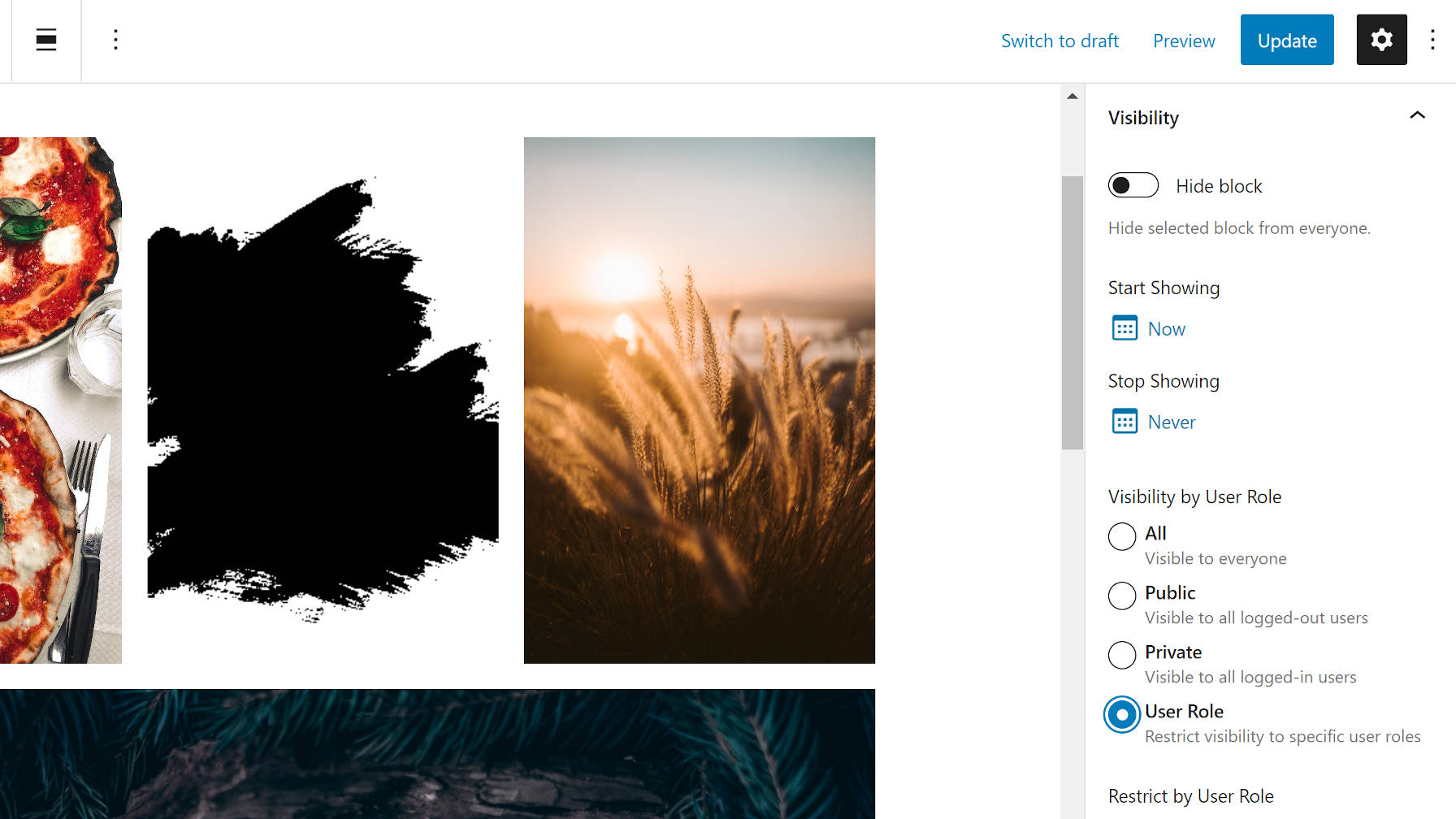 Show and Hide Content via the Block Visibility WordPress Plugin