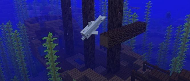 8b8961fb496d3b38e3943377c335884c-aquaticlegacy_header[1]