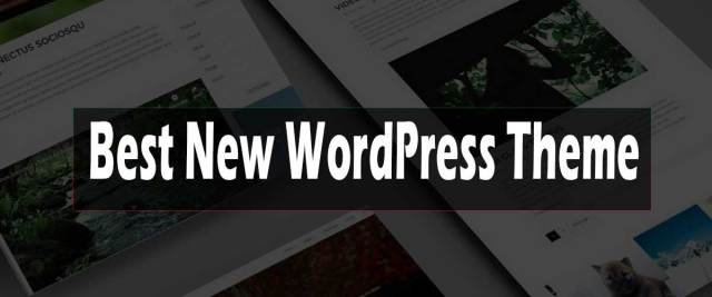 Best new WordPress Theme