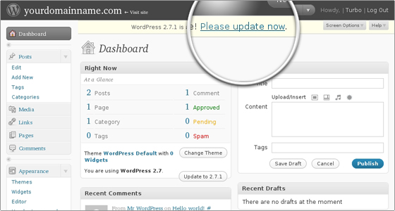 how-to-update-wordpress