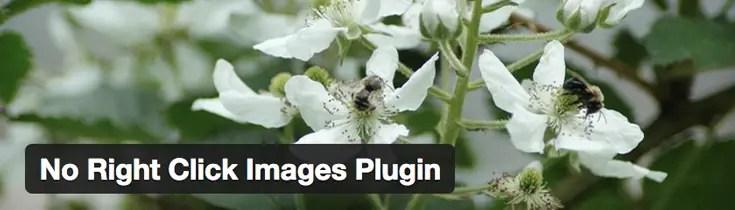 no-right-click-images-wordpress-plugin