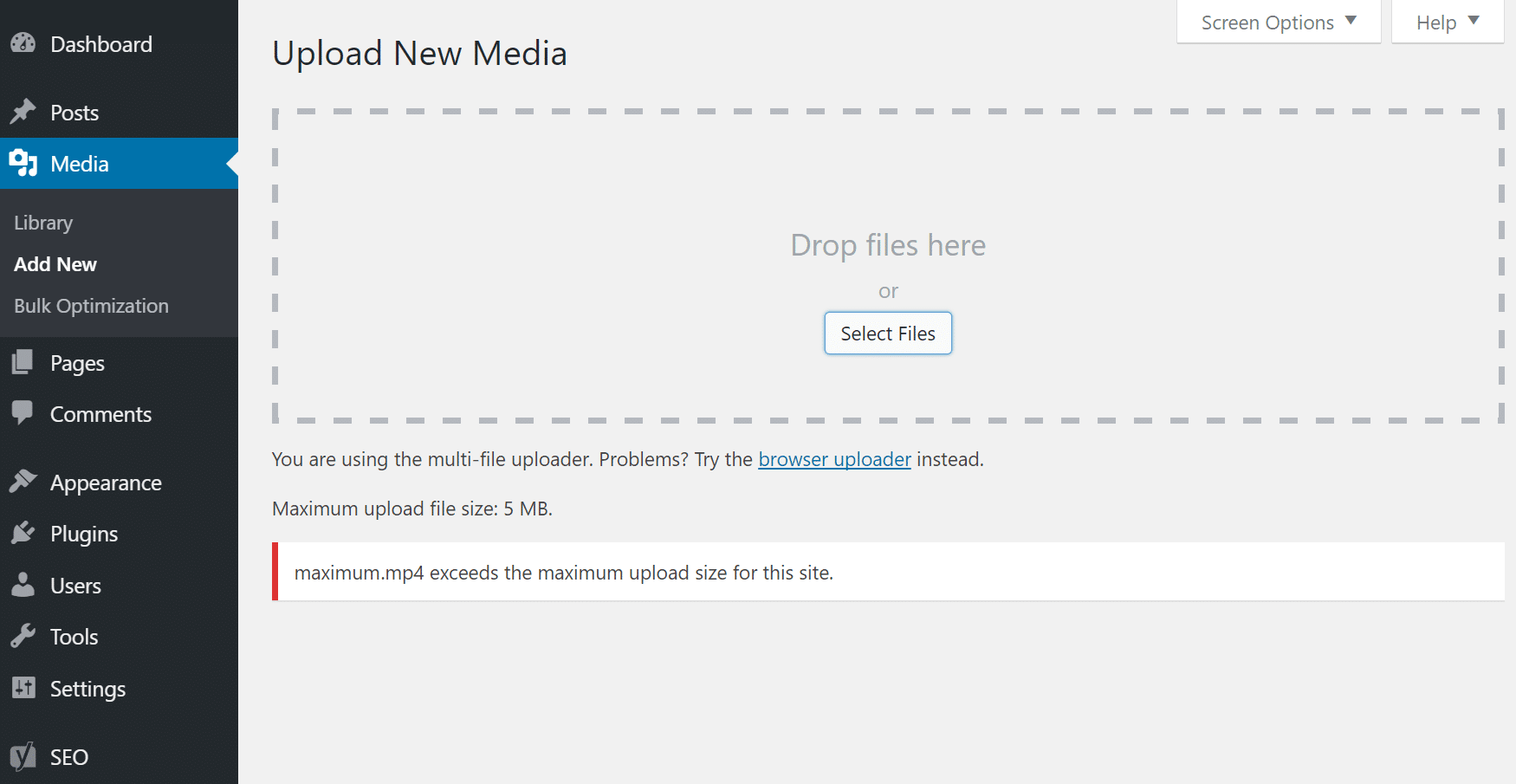 File exceeds the maximum upload size for this site