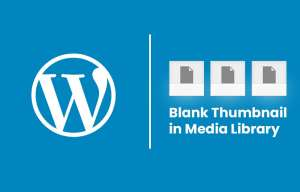 An Image Representing the WordPress Blank Thumbnail in Media Library Issue