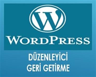 Wordpress düzenleyici geri getirme