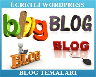 wordpress blog temaları