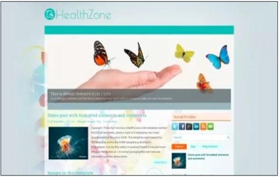 HEALTHZONE
