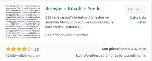Wordpress CSS ve JavaScript Küçültme