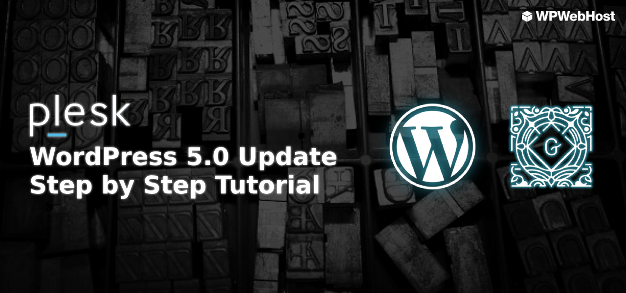 [WordPress 5.0] Step by Step Tutorial for Updating (100% Safe)