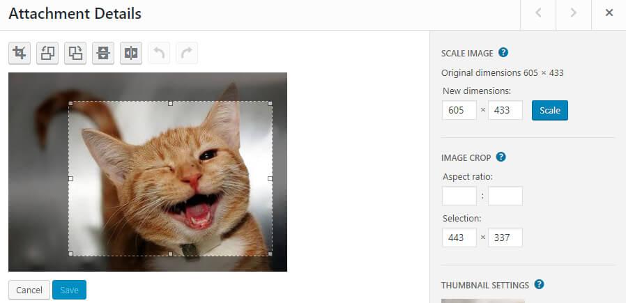 Cropping a WordPress image.