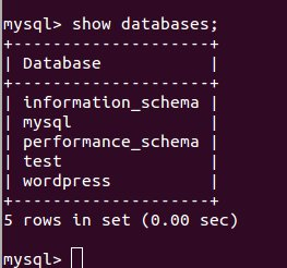 Using MySQL Command Line for Managing WordPress Database