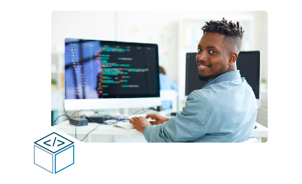 wp-developer
