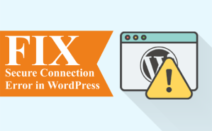 Step by step instructions to Fix Secure Connection Error in WordPress